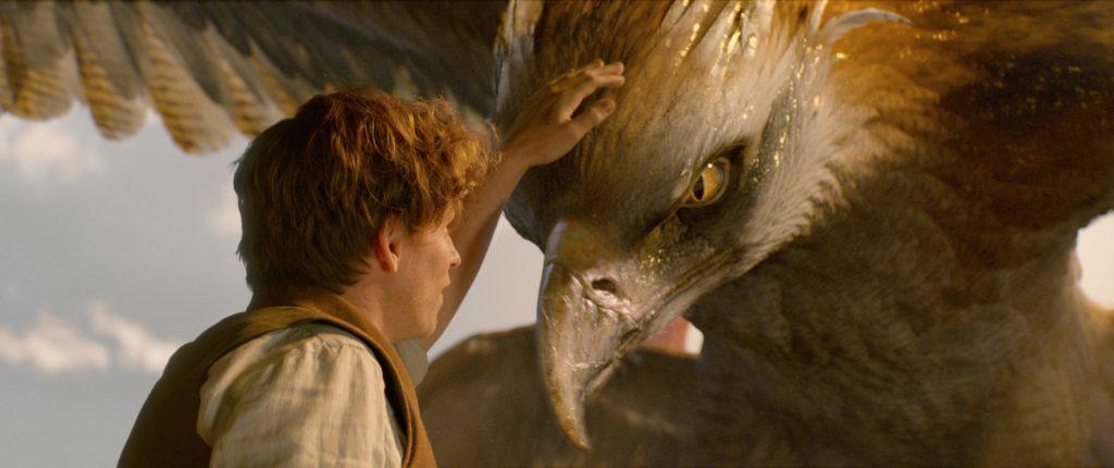 """Kadr zfilmu """"Fantastyczne zwierzęta ijak je znaleźć"""", reż. David Yates, 2016."""