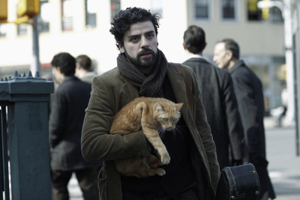 "Piękny... kot. Kadr z""Co jest grane, Davis?"", reż. Ethan iJoel Coen, 2013."