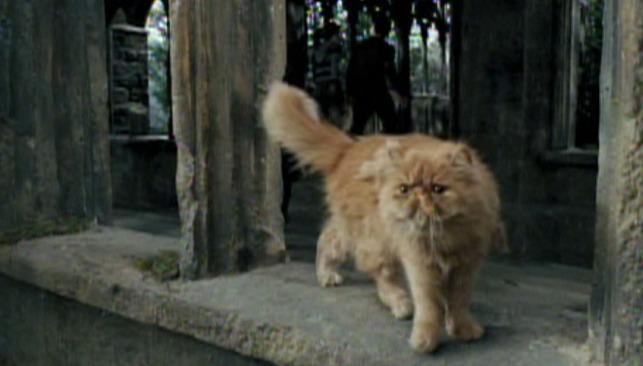 "Kadr zfilmu ""Harry Potter iWięzień Azkabanu"", reż. Alfonso Cuaron, 2004."