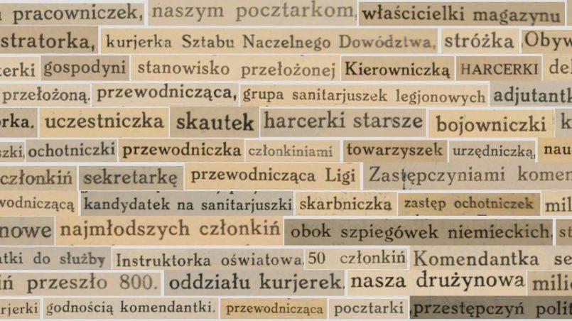 """Feminatywy pochodzące z oryginalnych wydań książek: """"Wierna służba. Wspomnienia uczestniczek walk o niepodległość,1910 - 1915"""" oraz """"Służba ojczyźnie. Wspomnienia uczestniczek walk o niepodległość, 1915-1918"""" pod red. Aleksandry Piłsudskiej; © Małgorzata Koniorczyk, 2018."""